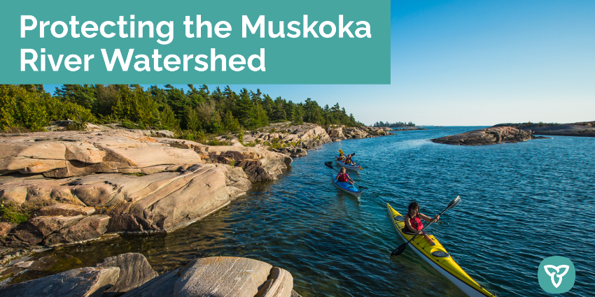 kayakers on a lake in Muskoka - heading on banner protecting the Muskoka River Watershed